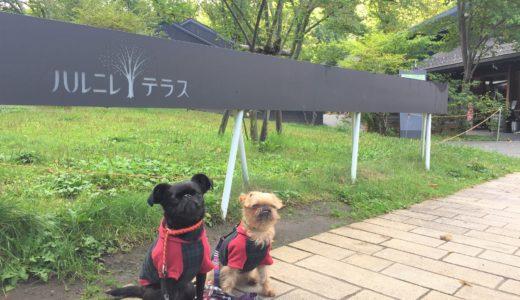 北軽井沢スウィートグラスに行ったら必ず寄りたいBest5