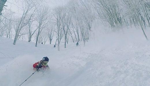 冬の北信濃の旅 …Days2(14, Jan. 2018) 斑尾高原スキー場その2 パウダー天国